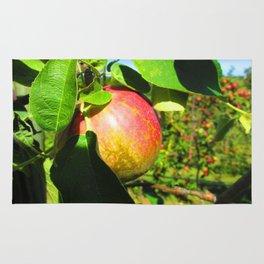 An Apple A Day... Rug