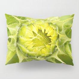 Teddy Bear Sunflower Opening Pillow Sham