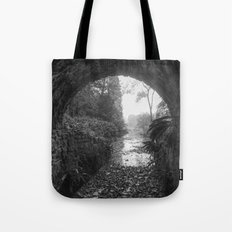 Out into the Light Tote Bag