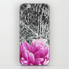Lost + Found iPhone & iPod Skin
