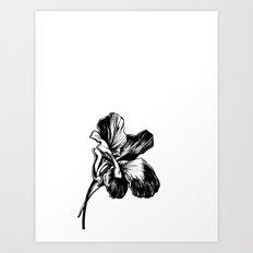 Nasturtium Art Print