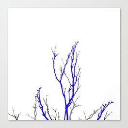 TWILIGHT WINTER TREE BRANCHES Canvas Print
