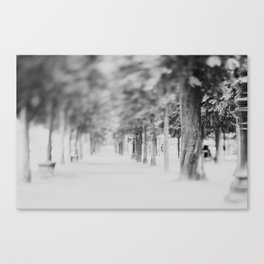 it's like walking into a dream ... Canvas Print