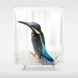 A Beautiful Kingfisher Bird Vector Shower Curtain