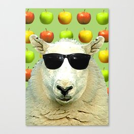 Cool D'ewe'd Canvas Print