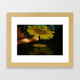 Sunflower reflection. Framed Art Print