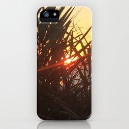 Sunset Peeking through the Dunes iPhone Case