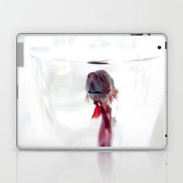 Betta Laptop & iPad Skin