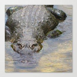 Gator Boy Canvas Print