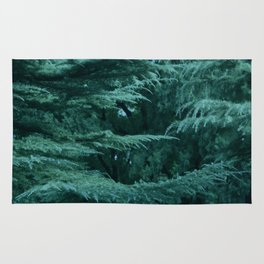 Forest by Lika Ramati Rug