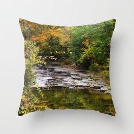 Fall Creek Landscape Throw Pillow