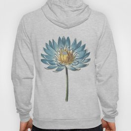 Blue Egyptian water lily Hoody