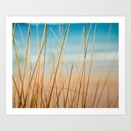 Through the Grass Art Print
