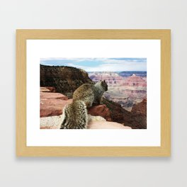 Squirrel Overlooking Grand Canyon Framed Art Print