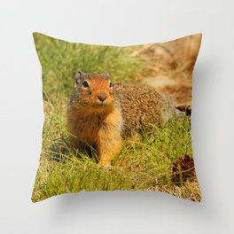 Twitchy Nosed Columbian Ground Squirrel Throw Pillow