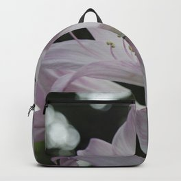 Collecting Light Backpack