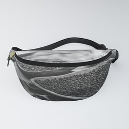 Bold and Fresh Fanny Pack