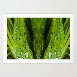 Floral Reflections in water Art Print