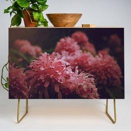 Pink Bellingrath Floral Credenza