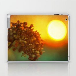 Sunlight in Her Hair Laptop & iPad Skin