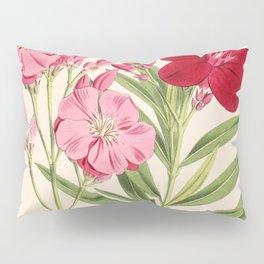 Nerium Oleander Vintage Scientific Floral Illustration Pillow Sham