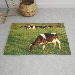 Holstein cattle Rug