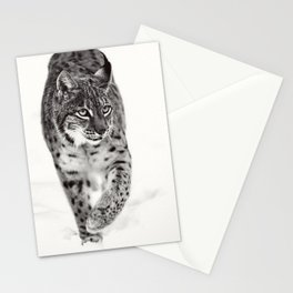Once félin Stationery Cards