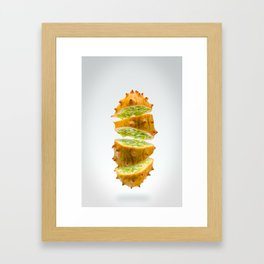 Flying Kiwano Framed Art Print