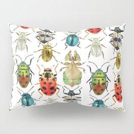 Beetle Compilation Pillow Sham