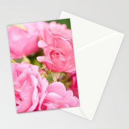 Beautiful pink roses bunch Stationery Cards