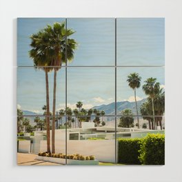 put the palm in palm springs Wood Wall Art