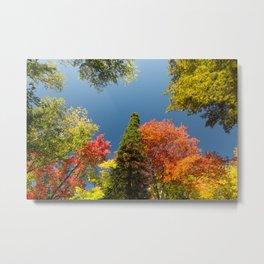 Fall Colors | The Upper Peninsula | Tahquamenon Falls State Park, Michigan | John Hill Photography Metal Print