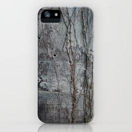 Vine and Hinge iPhone Case