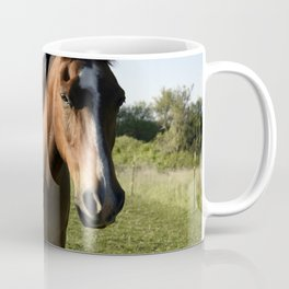 Brown Horse in a Pasture Coffee Mug