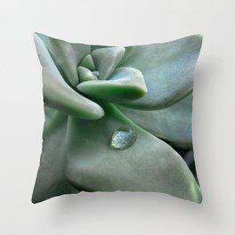 Dewdrop Throw Pillow
