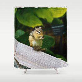 Chipmunk Chow Time Shower Curtain