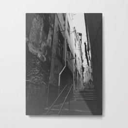 A narrow path Metal Print