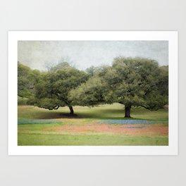 Hillcountry Bluebonnets Art Print
