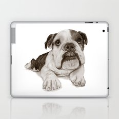 A Bulldog Puppy :: Brindle  Laptop & iPad Skin
