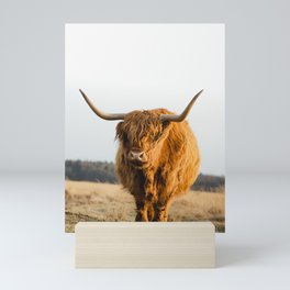 Scottish Higlander Mini Art Print