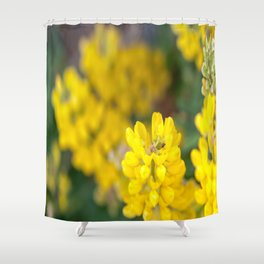 Yellow Lupin and a Ladybug Shower Curtain
