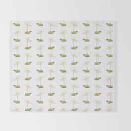 Eucharis Amazonica Throw Blanket