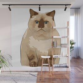 Fluffy CAT Wall Mural