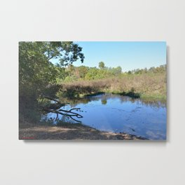 Where Canoes and Raccoons Go Series, No. 34 Metal Print