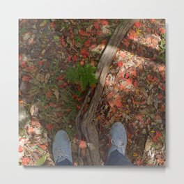 Steps in the flamboyant leaves Metal Print