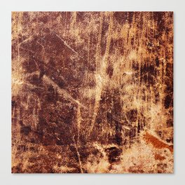 Aged Worn Leather Canvas Print