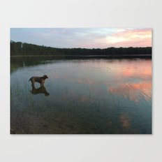 silver lake reflection Canvas Print