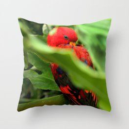 Red Lory Throw Pillow