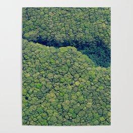 Kauai Above The Trees Poster