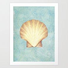 concha de mar Art Print